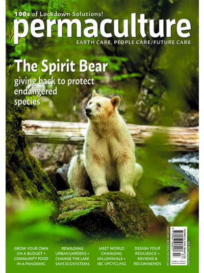 Permaculture magazine issue #107