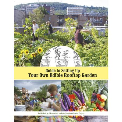 Guide to Setting Up Your Own Edible Rooftop Garden