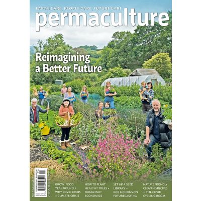 Permaculture magazine issue #105