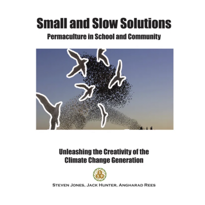 Small and Slow Solutions