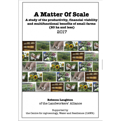 A Matter of Scale