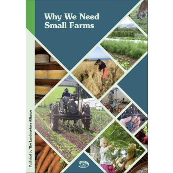 Why We Need Small Farms