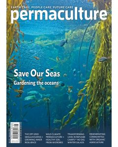 Permaculture magazine issue #101 - out 31st July